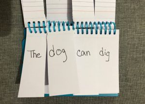 "A phonics flip book page that says ""The dog can dig."""