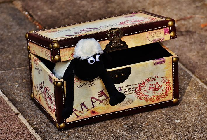 Toy sheep in a treasure box
